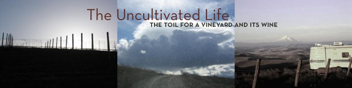 The Uncultivated Life